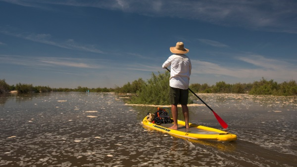 Bringing the Colorado River Back to Life