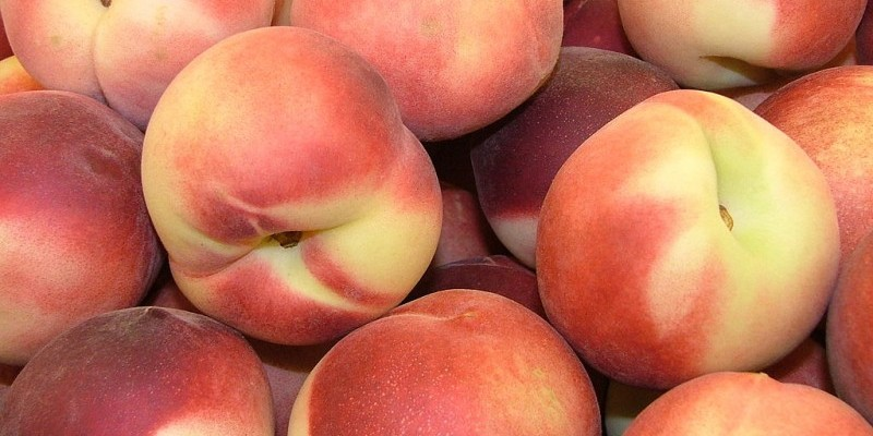 Radio Nibbles: Peaches, Sangria, and Kale