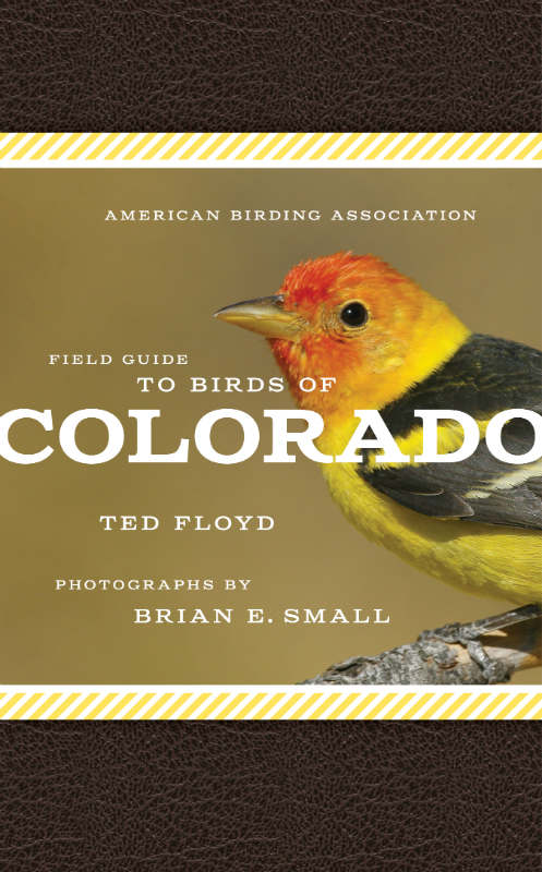Field Guide to Birds of Colorado