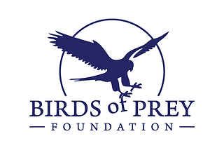 Dot Org: The Birds of Prey Foundation