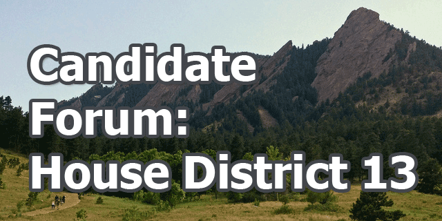 Metro: House District 13 Candidate Forum