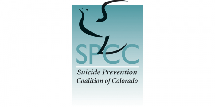 Suicide and Teen's Access to Firearms and Medications in Household