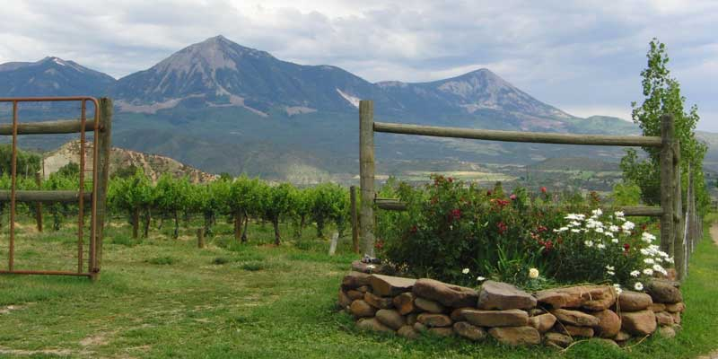 Food Producers Organize to Keep Fracking out of The North Fork Valley