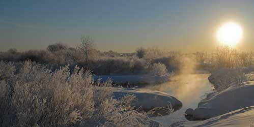 January Nature Almanac: Winter Solstice