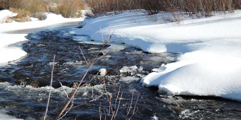 colorado river frasier
