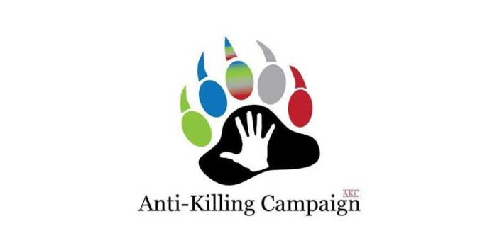 Dot Org: Anti Killing Campaign