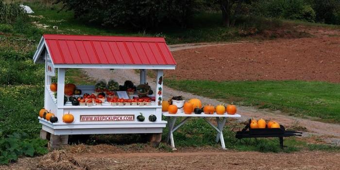Radio Nibbles: 2015 Farm Fresh Directory & Food Calendar