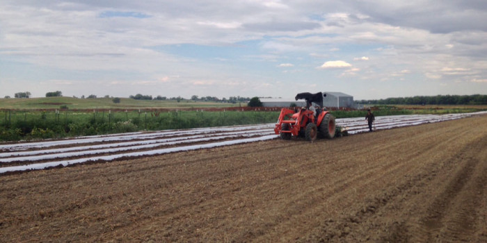Front Range Farmers Struggle Against Heavy Rainfall
