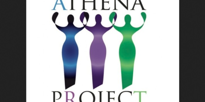 Dot Org: Athena Project