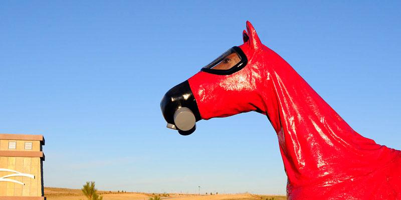 "Jeff Gipe ""Cold War Horse"""