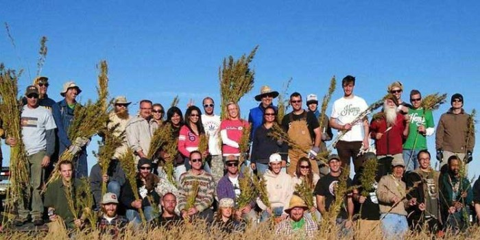 Hemp Business Journal launches in Colorado