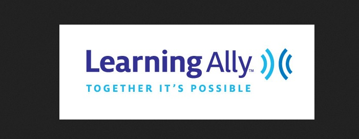 Dot Org: Learning Ally