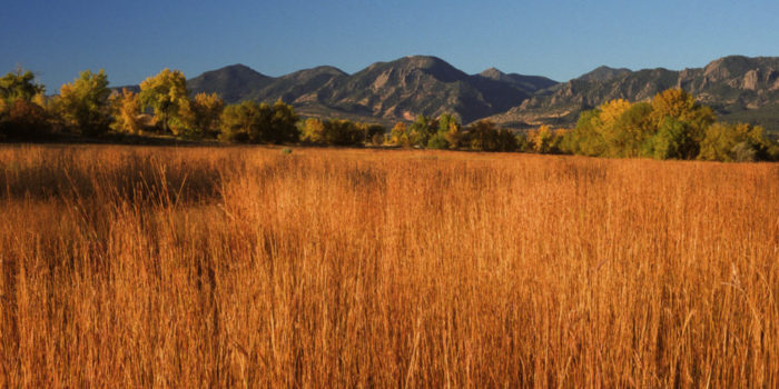 October Nature Almanac: Fall Colors on the Tallgrass Prairie