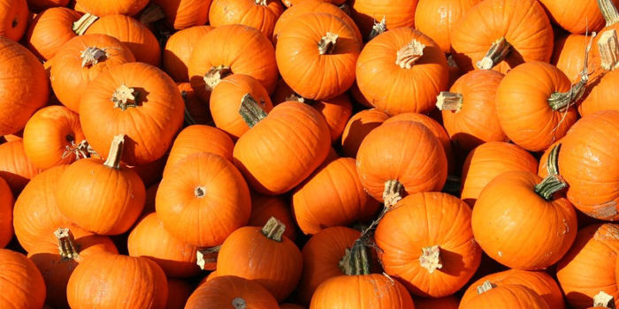 Naturally: Pumpkins