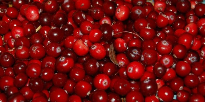 Naturally: Cranberries