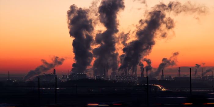 Social justice and the environment