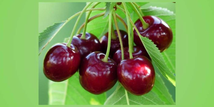 Naturally: Cherries