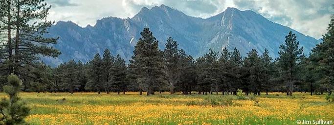 Dot Org: Boulder Open Space