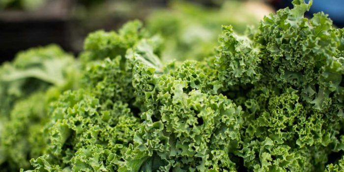 Radio Nibbles: Leafy Greens