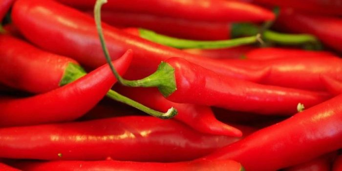 Radio Nibbles: Spicy Foods in Summertime