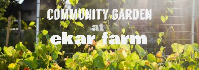 Dot Org: Ekar Farm