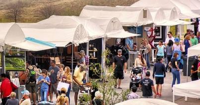 Dot Org: Stanley Arts Festival